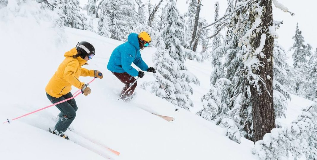 1ee700bc3dc2a7 ... Best Backcountry Skis in 2019. Winter Sports · Skiing